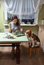 Companion the dog looks as the mistress embroiders Stock Photos