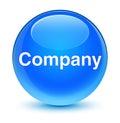 Company glassy cyan blue round button