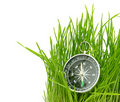 Compass in green grass Royalty Free Stock Photography