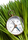 Compass and Green Grass Royalty Free Stock Photography