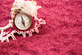 Compass with shell on red sand Royalty Free Stock Photo