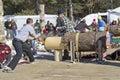 Competencia de two man bucksaw del leñador Fotos de archivo