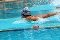 Competição da natação Imagens de Stock