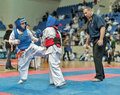 Competition on kyokushinkai karate. Stock Photography