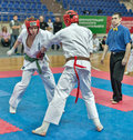 Competition on kyokushinkai karate. Royalty Free Stock Photo