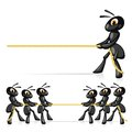 Competition with rope funny ants compete in power and pull a Stock Photography