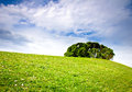 Composed landscape meadow tree and clouds Stock Photography
