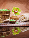Composition of bathing accesories Royalty Free Stock Photography