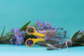 Composition with a bouquet of flowers of violet asters and sciss