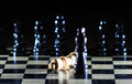 Composition with chessmen on glossy chessboard Stock Images