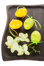 Composition with colorful Easter eggs and flowers orchids Royalty Free Stock Photos