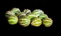 Composition of Cucumis africanus fruits on black Royalty Free Stock Photos