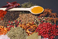The Composition with different spices and herbs Royalty Free Stock Photo