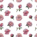 The composition of the flowers of peony. Seamless watercolor pattern of flowers. Botanical pattern. Watercolor peonies.