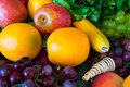 Composition with fruits and vegetables see my other works in portfolio Royalty Free Stock Photo