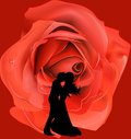 Composition in love with a pair of red rose in the background Royalty Free Stock Images