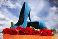 Composition with red roses and blue female shoes Royalty Free Stock Image