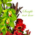 Composition of rose, gerbera, orchid and anthurium Royalty Free Stock Photo