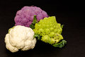 Composition of several cabbages Royalty Free Stock Photo