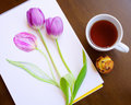 Composition of sketch of violet tulip and two live tulips tea and mini cake  on wooden background Royalty Free Stock Photo