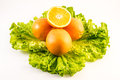 Composition of sliced oranges with salad on a white background Royalty Free Stock Photo