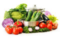 Composition with variety of organic vegetables on white Royalty Free Stock Photo