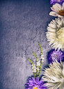 Composition of white dahlias and blue asters on dark background top view toning Stock Photos