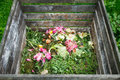 Compost bin in the garden Royalty Free Stock Image