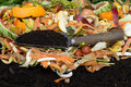 Compost with composted soil making from vegetable and fruit peels Stock Image