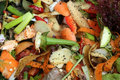 Compost composting in vegetable garden closeup Stock Images