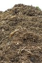 Compost heap with a white background Stock Photo