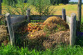 Compost pile Royalty Free Stock Photo