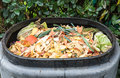 Composting the kitchen waste in a plastic compost bin Royalty Free Stock Images