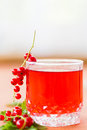 Compote of red currants on a wooden table Stock Photography