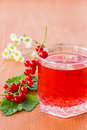 Compote of red currants on a wooden table Stock Photos