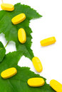 Comprimidos da vitamina sobre as folhas verdes Fotografia de Stock Royalty Free