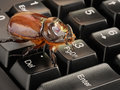 Computer bug Royalty Free Stock Photo