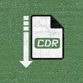 Computer cdr file icon Royalty Free Stock Photo