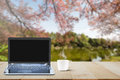 Computer laptop with black screen and hot coffee cup on wooden table top on blurred lake and cherry blossom tree background