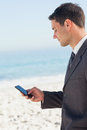 Concentrated businessman sending a text message on the beach Royalty Free Stock Photo
