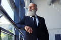 Concentrated gentleman with grey beard looking out window Royalty Free Stock Photo