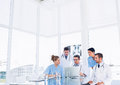 Concentrated medical team using laptop together in the office Royalty Free Stock Image