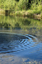 Concentric Ripples Stock Images