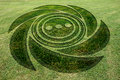 Concentric spiral circles fake crop circle meadow Royalty Free Stock Photo