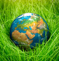 Concept earth day globe lies on green grass Stock Photos