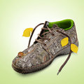 Concept. Eco-friendly shoes. Royalty Free Stock Photo