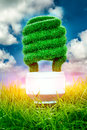 Concept eco light bulb in green grass on blue sky background Royalty Free Stock Image