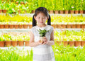 Concept little girl holding plant white background Stock Photo