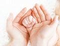 Concept of love, parenthood, motherhood. newborn baby handle in Royalty Free Stock Photo