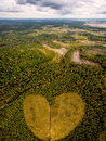 Concept of love to nature. Take care and enjoy the forest.